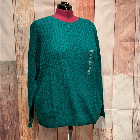 NWT Kim Rogers Curvy Cable Knit Crew Neck Sweater